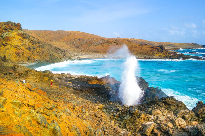 Blowhole Copyright by Steve Francees Editorial
