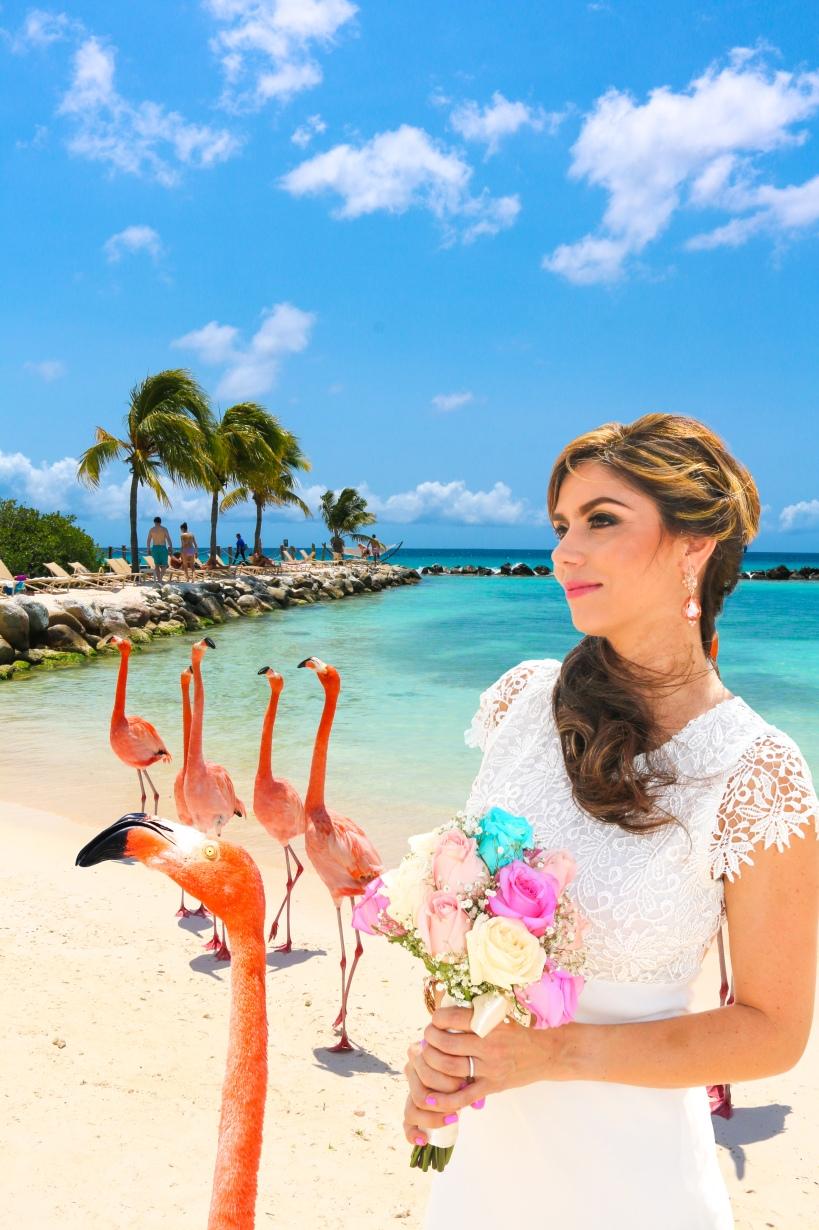 Flamingo Bride GALLERY by Steve Francees-2